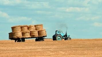 tractor pulling hay